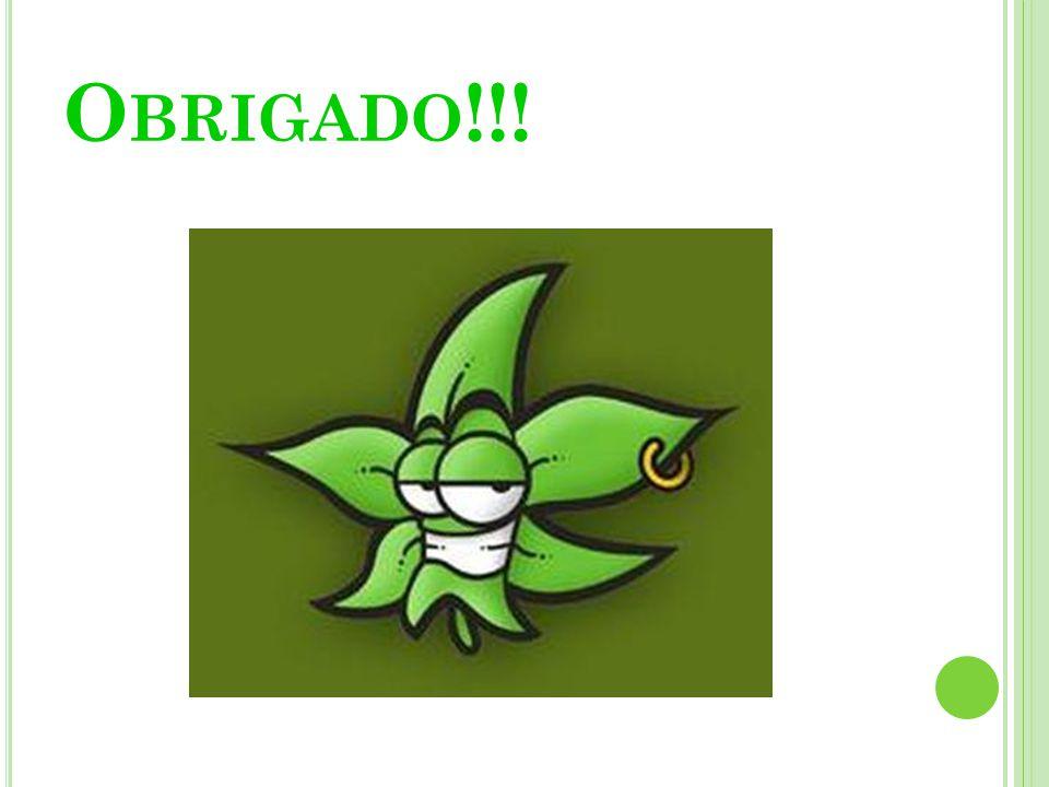 O BRIGADO !!!