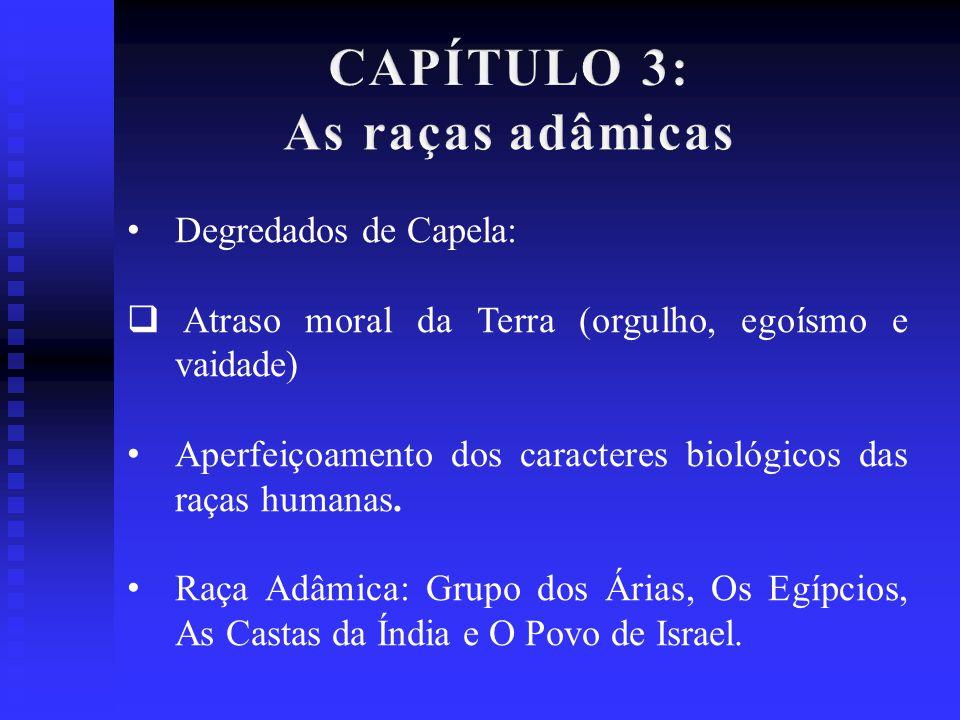 CAPÍTULO 4, 5, 6, 7 e 8: Detalha minuciosamente as contribuições de cada povo que constituíram as raças adâmicas