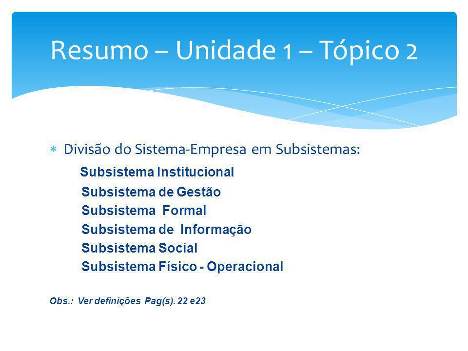Divisão do Sistema-Empresa em Subsistemas: Subsistema Institucional Subsistema de Gestão Subsistema Formal Subsistema de Informação Subsistema Social