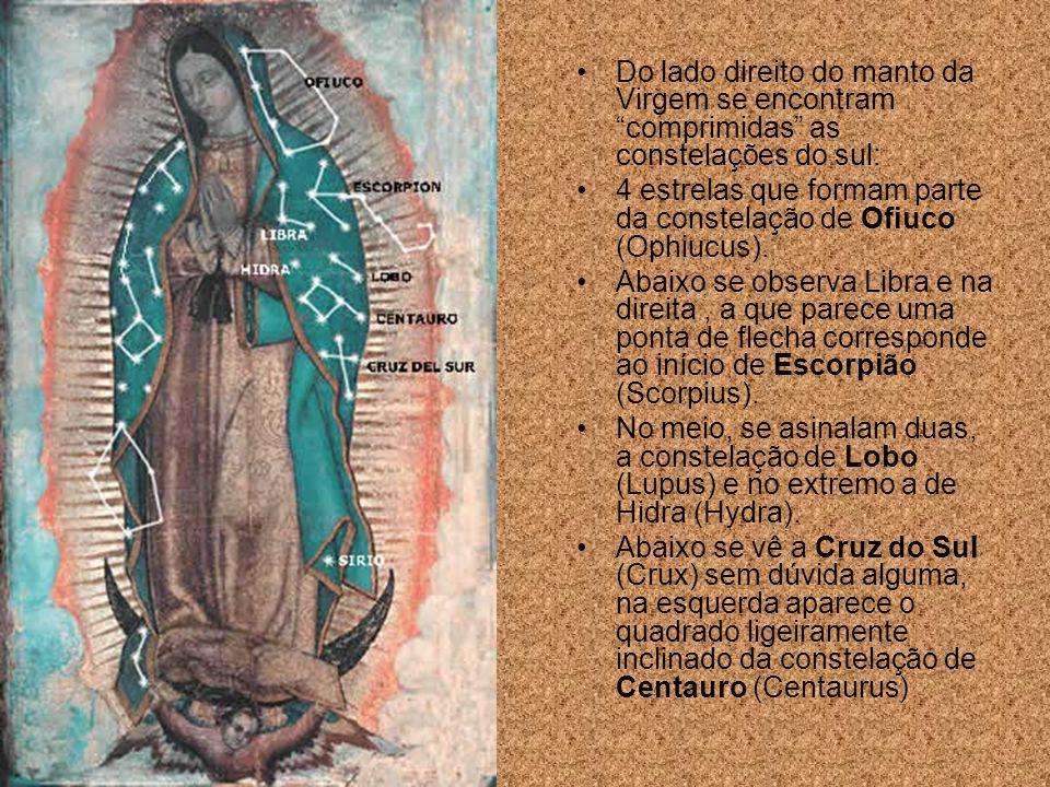 8. As estrelas visíveis no Manto de María refletem a exata configuração e posição que apresentava o céu do México no dia em que aconteceu o milagre.
