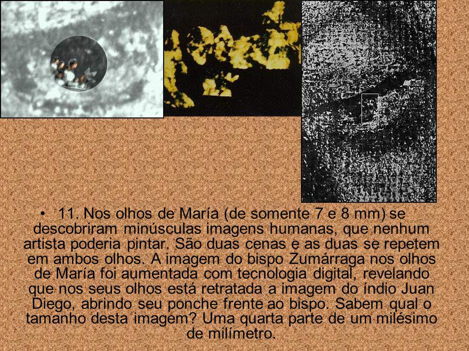 10. A ciência descobriu que os olhos de María possuem os tres efeitos de refração da imagem de um olho humano.
