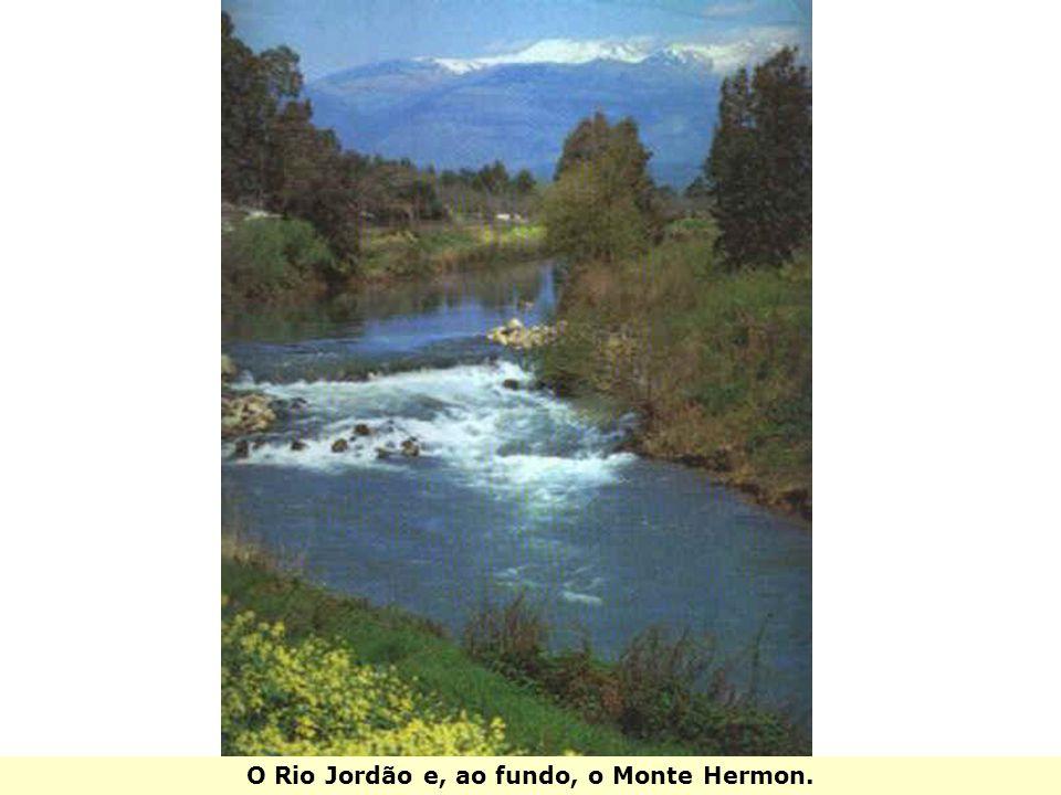 O Rio Jordão e, ao fundo, o Monte Hermon.