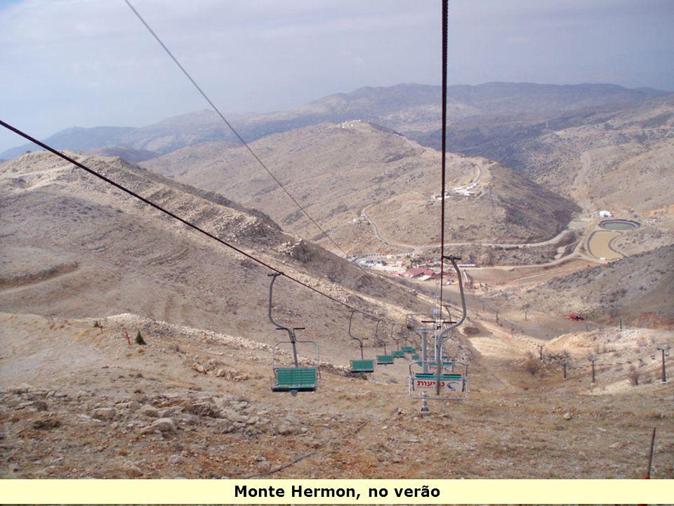 Monte Hermon, no verão