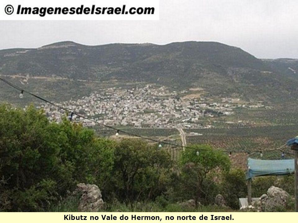 Kibutz no Vale do Hermon, no norte de Israel.