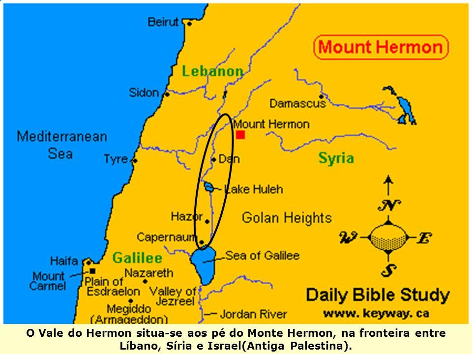 O Vale do Hermon situa-se aos pé do Monte Hermon, na fronteira entre Líbano, Síria e Israel(Antiga Palestina).