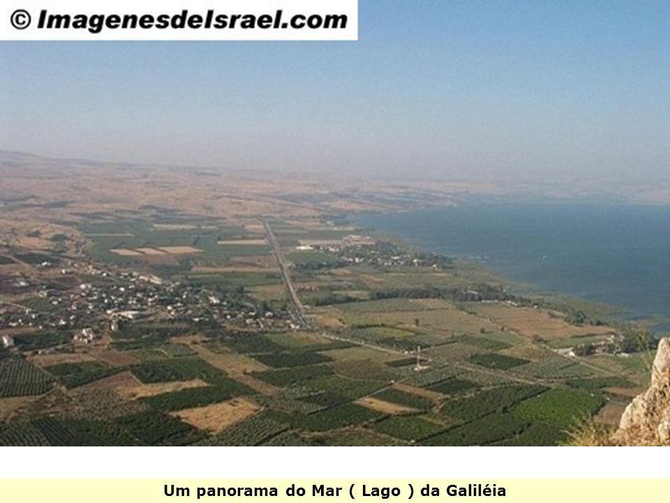 Um panorama do Mar ( Lago ) da Galiléia