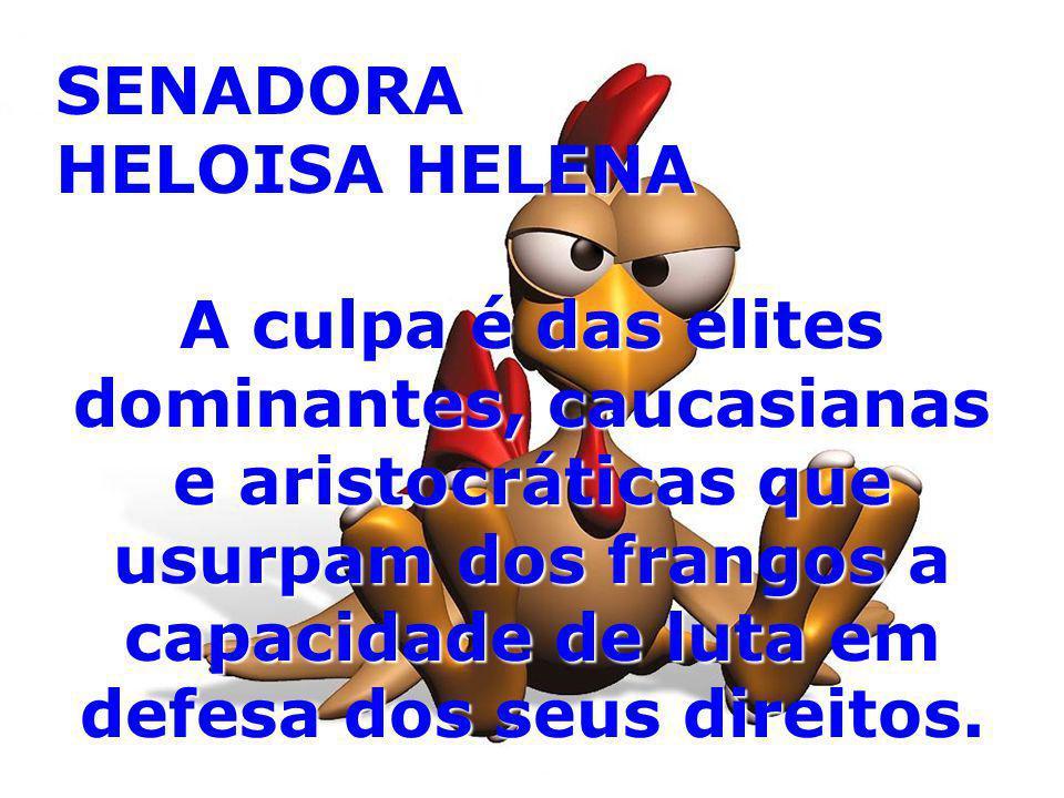 SENADORA HELOISA HELENA A culpa é das elites dominantes, caucasianas e aristocráticas que usurpam dos frangos a capacidade de luta em defesa dos seus