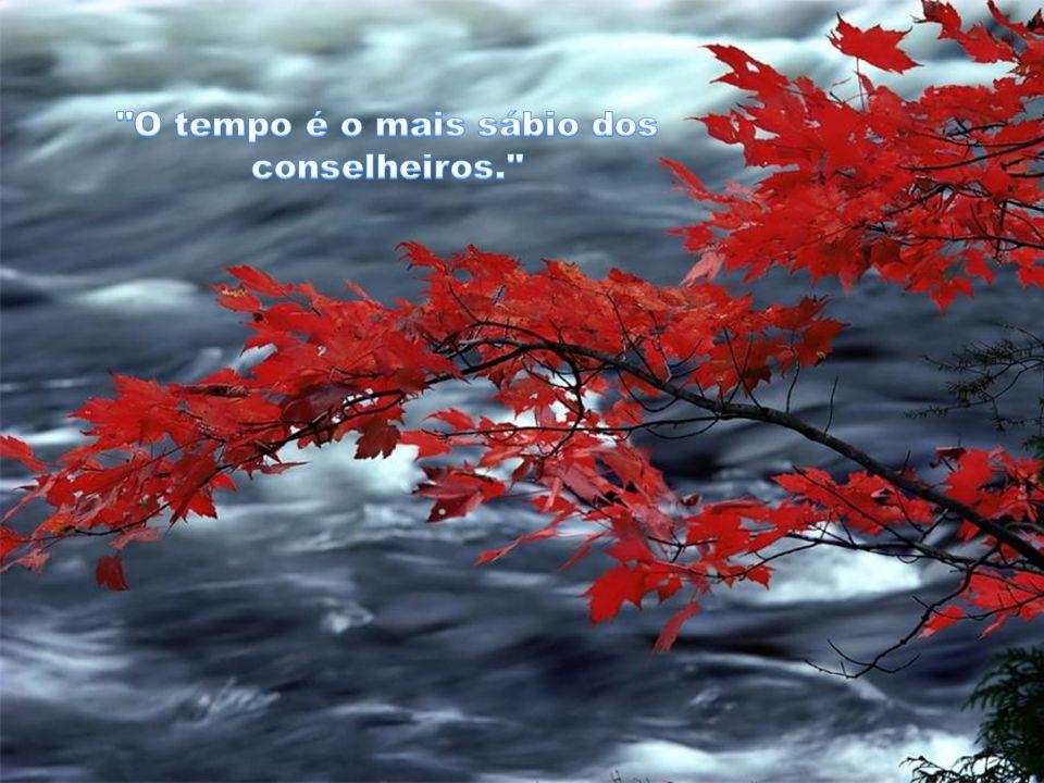 CRIAÇÃO RUTH JACOBSEN EM- 14/04/2012- SBC- SP. MÚSICA- ENNIO MARRICONE- A MISSÃO
