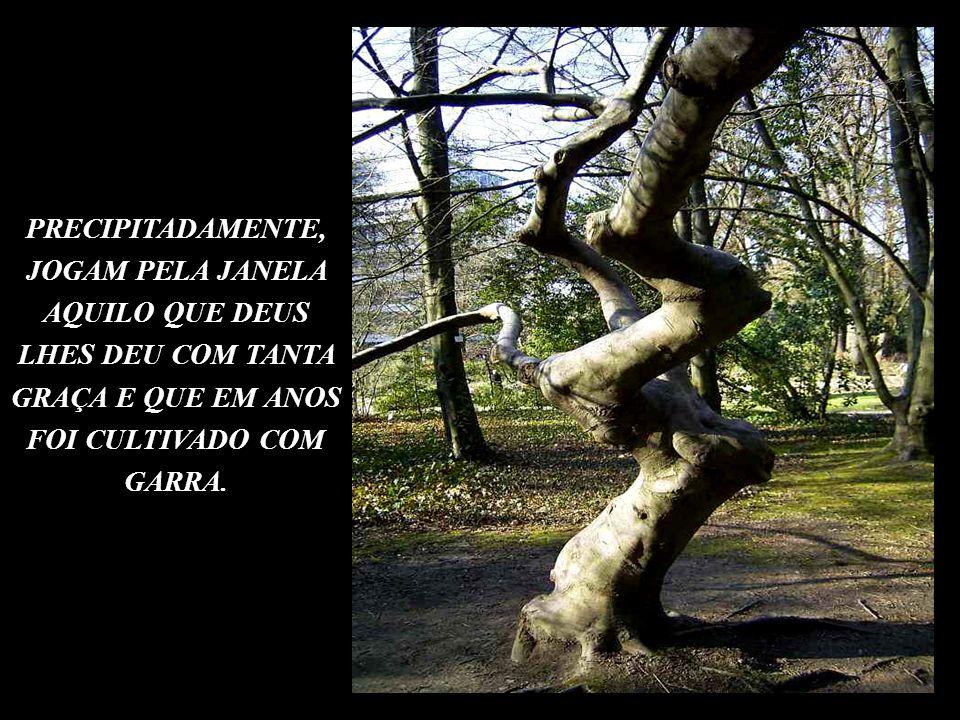 DO CONHECIMENTO ACUMULADO DURANTE OS ANOS DE VIDA,DA BOA SAÚDE, DAS BELEZAS DA VIDA.