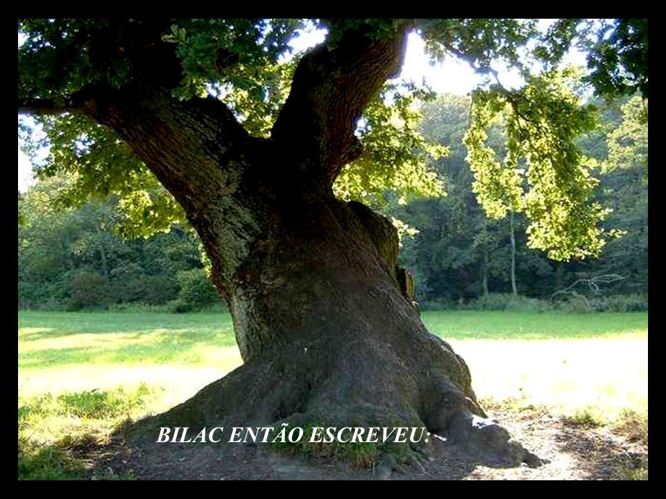 BILAC ENTÃO ESCREVEU: