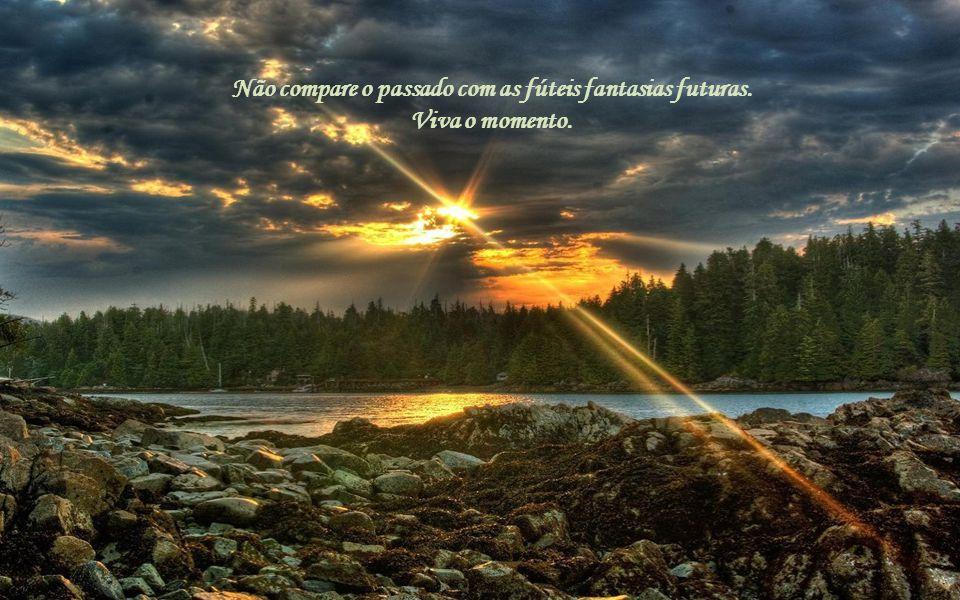 Amanhã poderá mudar, então desfrute aquilo. Depois de amanhã algo mais poderá acontecer. Desfrute-o.