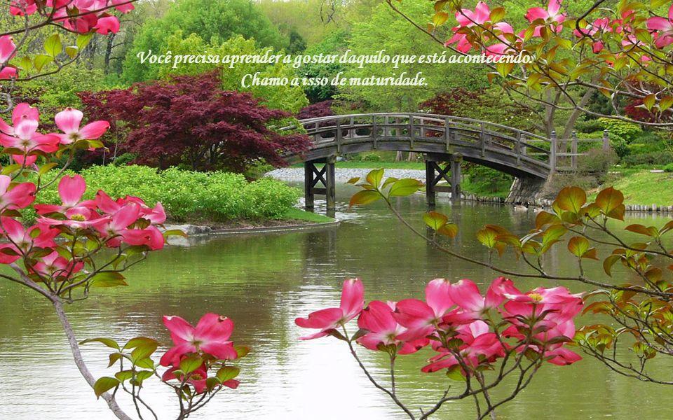Texto: Osho Música: Yanni Formatação: bvbiavasconcellos@gmail.com BIAJOVA SLIDES Amor à vida