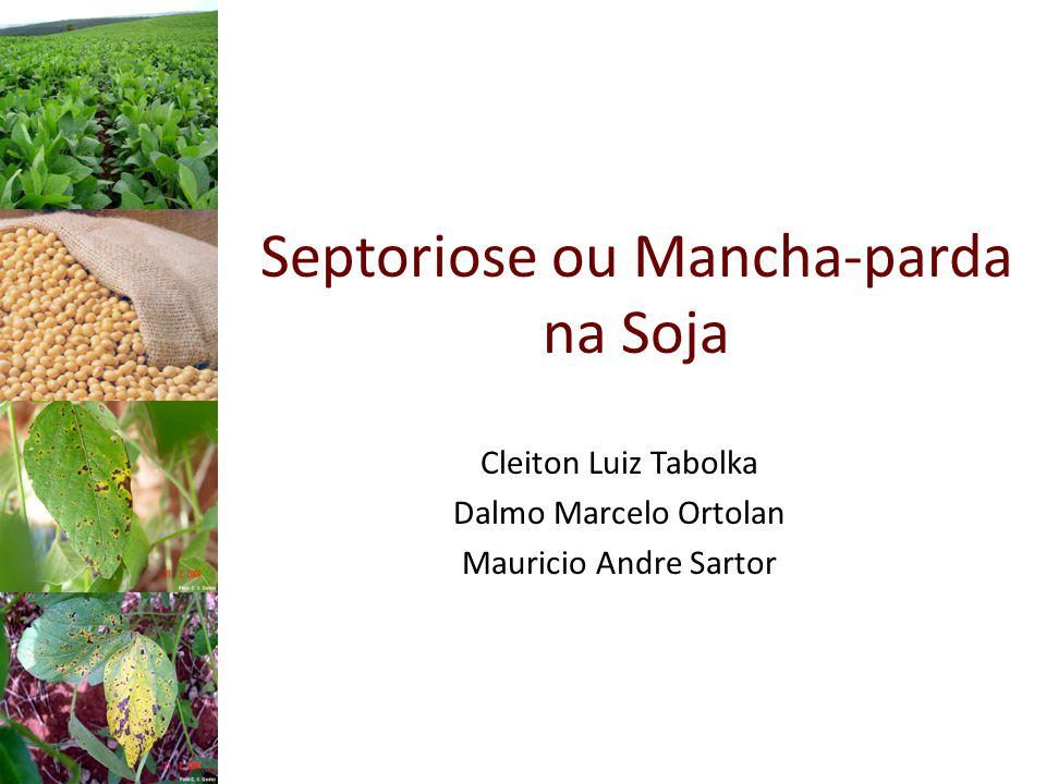 Septoriose ou Mancha-parda na Soja Cleiton Luiz Tabolka Dalmo Marcelo Ortolan Mauricio Andre Sartor