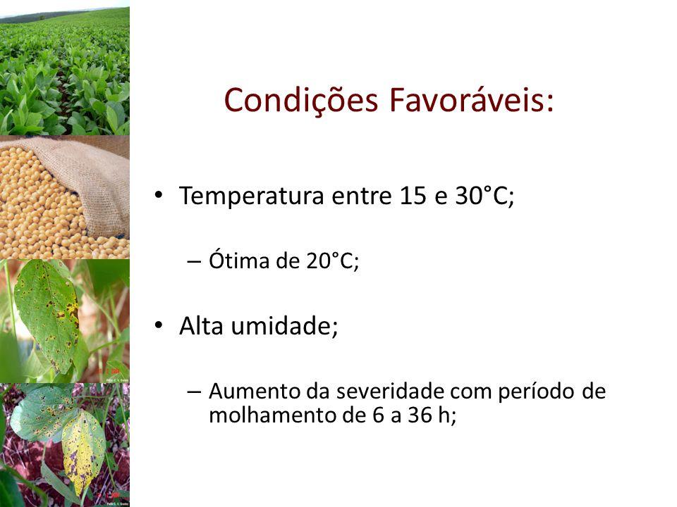 Condições Favoráveis: Temperatura entre 15 e 30°C; – Ótima de 20°C; Alta umidade; – Aumento da severidade com período de molhamento de 6 a 36 h;