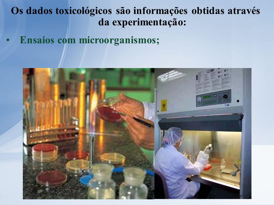 Os dados toxicológicos são informações obtidas através da experimentação: Ensaios com microorganismos;