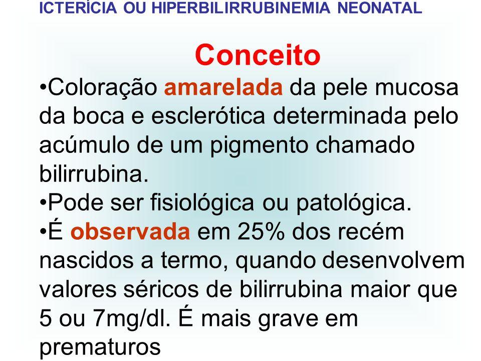 ICTERÍCIA OU HIPERBILIRRUBINEMIA NEONATAL METABOLISMO DA BILIRRUBINA Liberação: degradação da hemácia que após transformações libera a bilirrubina para a corrente sanguínea.
