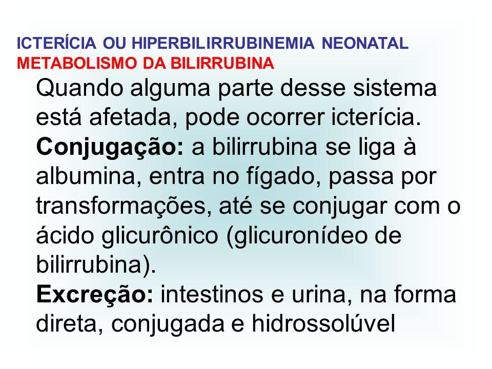 Quando alguma parte desse sistema está afetada, pode ocorrer icterícia. Conjugação: a bilirrubina se liga à albumina, entra no fígado, passa por trans