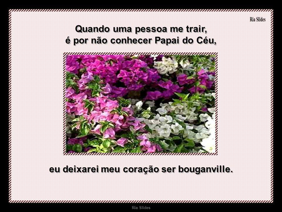 Ria Slides Quando uma pessoa me trair, é por não conhecer Papai do Céu, eu deixarei meu coração ser bouganville.