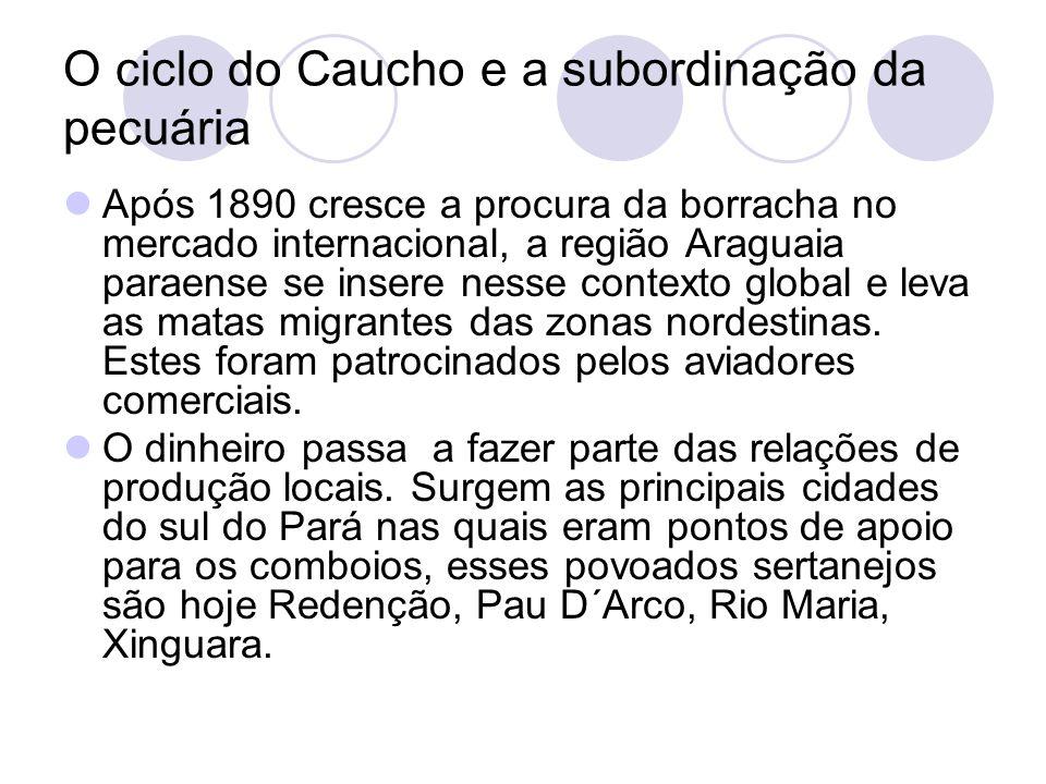 O ciclo do Caucho e a subordinação da pecuária Após 1890 cresce a procura da borracha no mercado internacional, a região Araguaia paraense se insere nesse contexto global e leva as matas migrantes das zonas nordestinas.