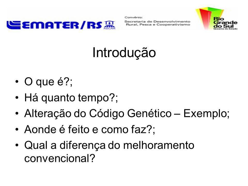 Introdução O que é?; Há quanto tempo?; Alteração do Código Genético – Exemplo; Aonde é feito e como faz?; Qual a diferença do melhoramento convenciona