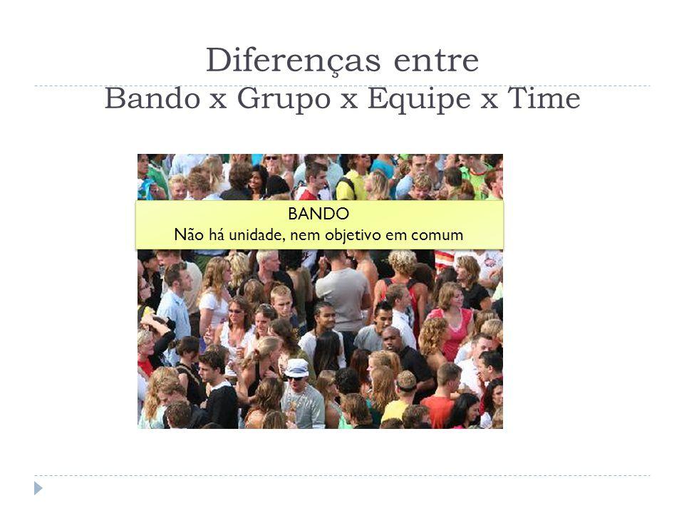 Diferenças entre Bando x Grupo x Equipe x Time BANDO Não há unidade, nem objetivo em comum BANDO Não há unidade, nem objetivo em comum