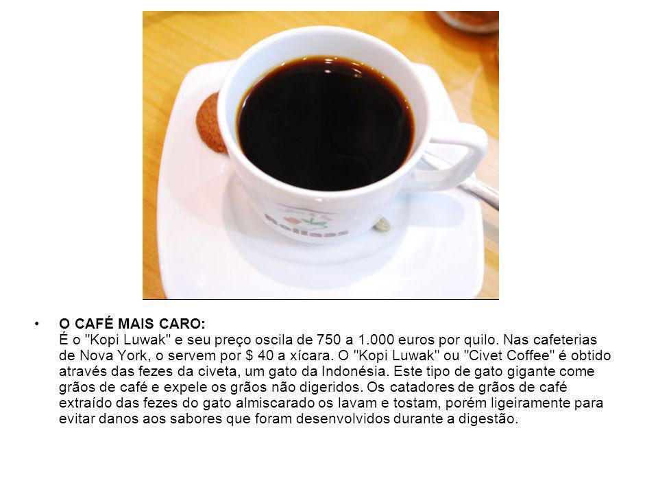 O CAFÉ MAIS CARO: É o Kopi Luwak e seu preço oscila de 750 a 1.000 euros por quilo.