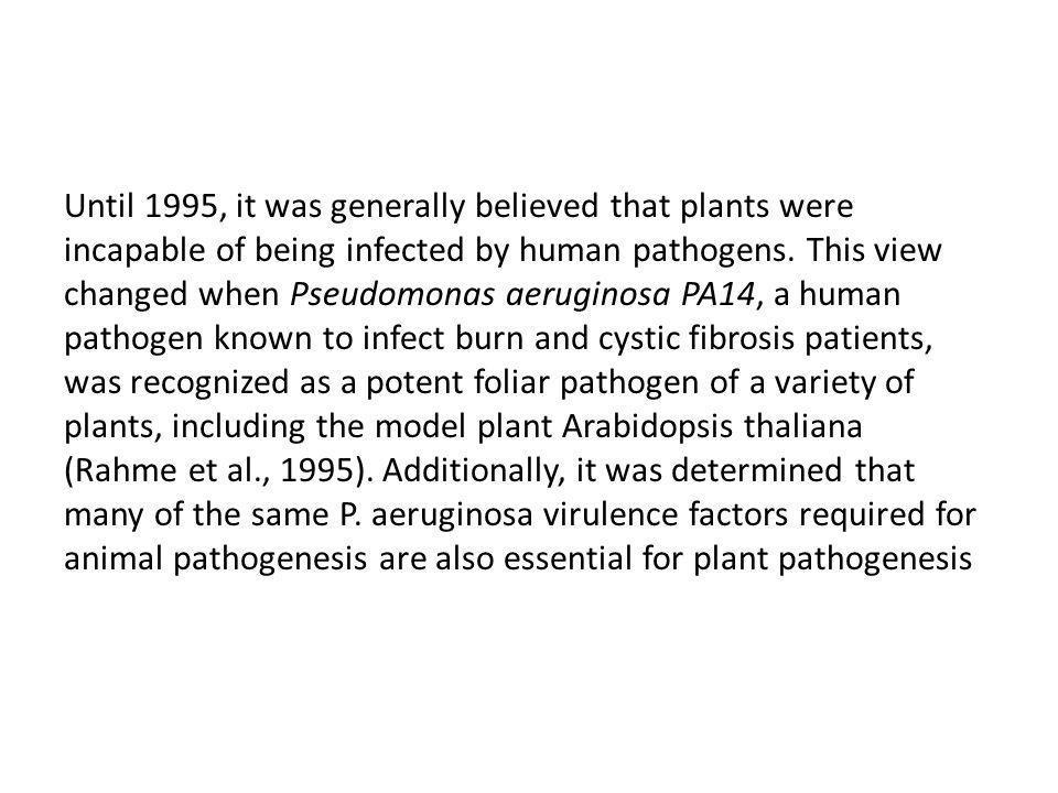 Este ponto de vista mudou quando Pseudomonas aeruginosa PA14, (fibrose cística, foi reconhecido como um potente patógeno foliar de uma variedade de plantas, incluindo a planta modelo Arabidopsis thaliana (Rahme et al., 1995).
