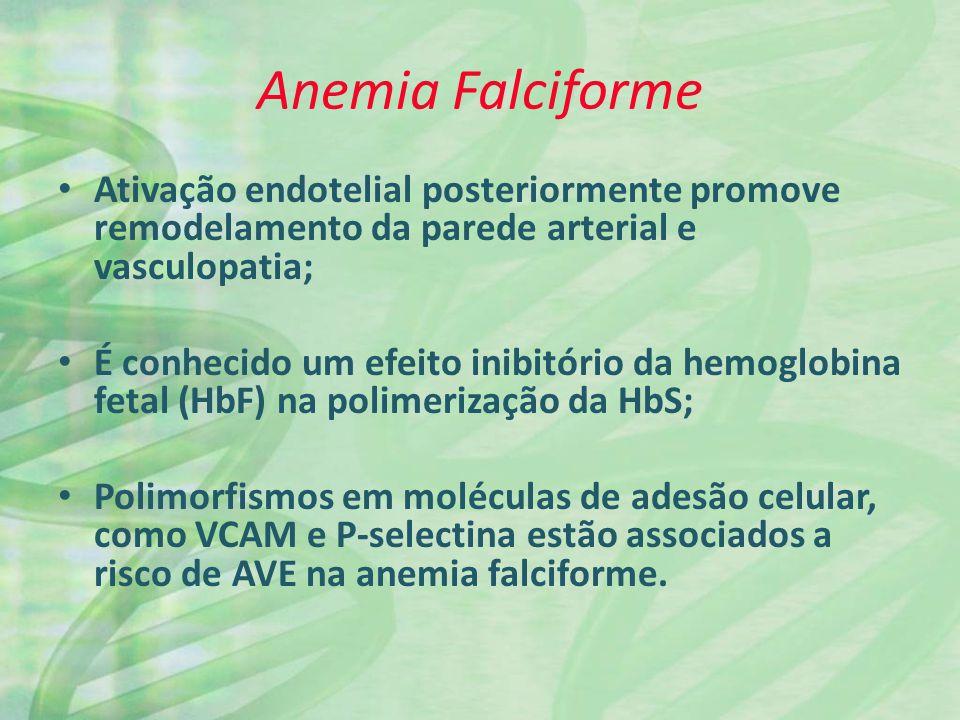 Anemia Falciforme Ativação endotelial posteriormente promove remodelamento da parede arterial e vasculopatia; É conhecido um efeito inibitório da hemoglobina fetal (HbF) na polimerização da HbS; Polimorfismos em moléculas de adesão celular, como VCAM e P-selectina estão associados a risco de AVE na anemia falciforme.