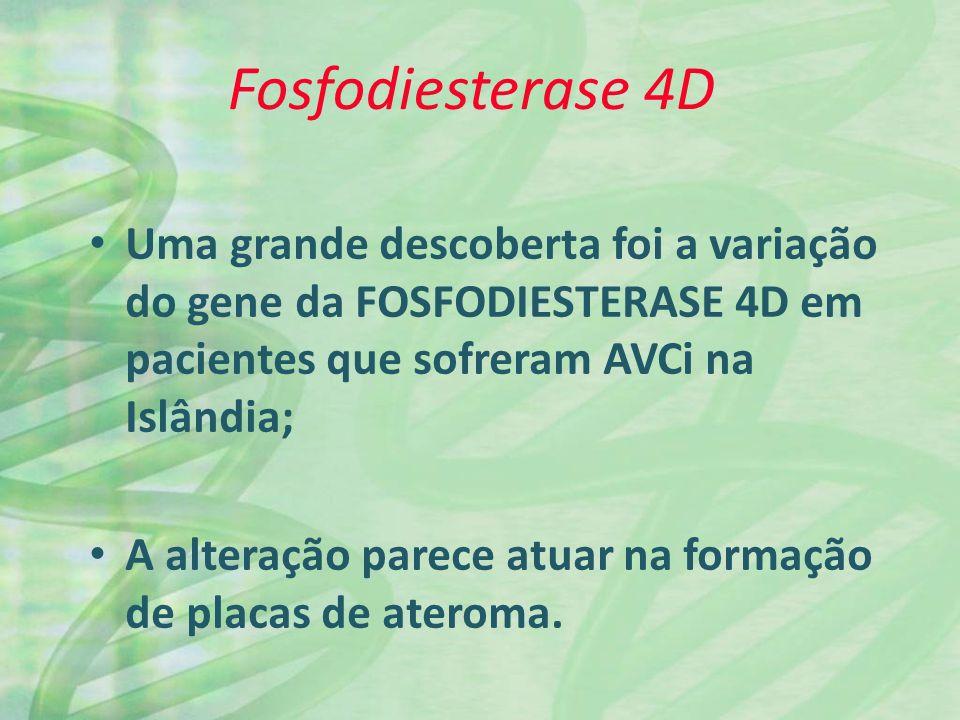 Fosfodiesterase 4D Uma grande descoberta foi a variação do gene da FOSFODIESTERASE 4D em pacientes que sofreram AVCi na Islândia; A alteração parece atuar na formação de placas de ateroma.