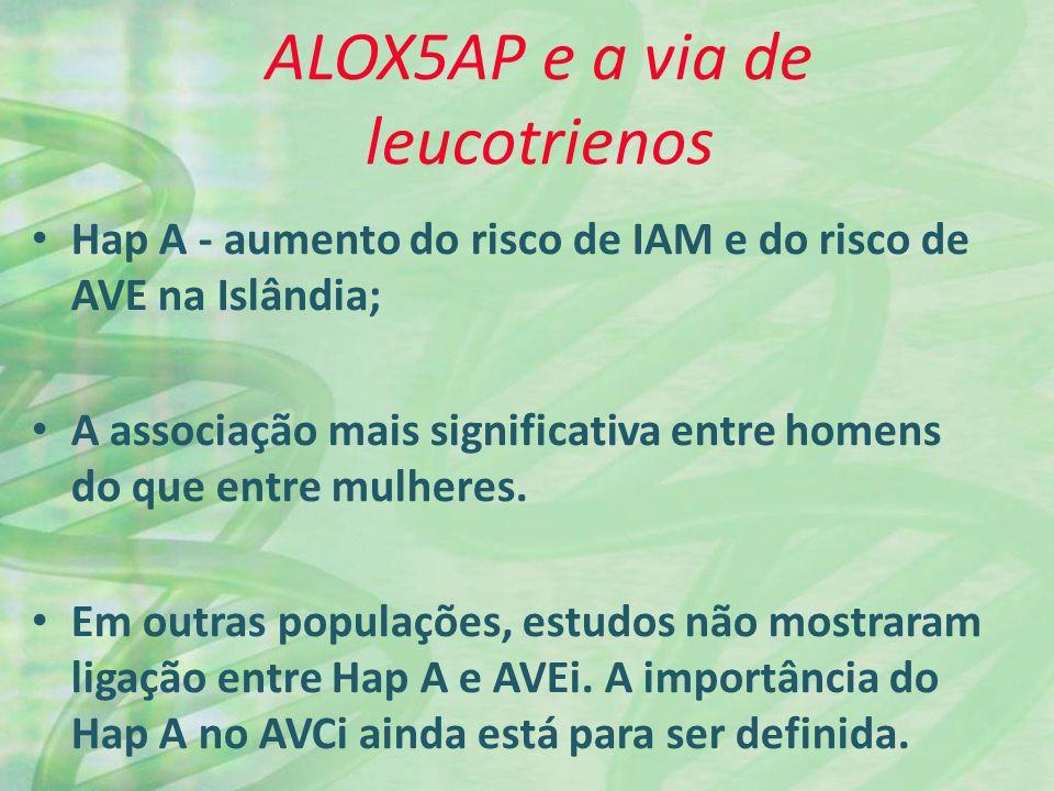 ALOX5AP e a via de leucotrienos Hap A - aumento do risco de IAM e do risco de AVE na Islândia; A associação mais significativa entre homens do que entre mulheres.