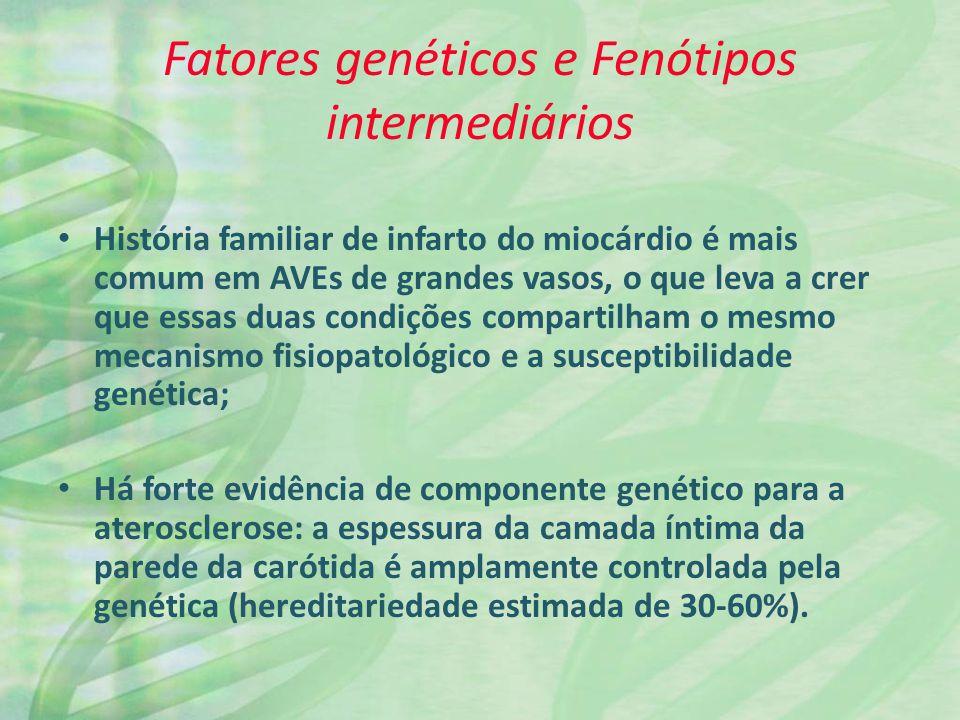 Fatores genéticos e Fenótipos intermediários Fatores genéticos podem agir em diversos níveis: Contribuindo para os fatores de risco tradicionais (hipertensão, diabetes, concentração de homocisteína); Interagindo com fatores ambientais; Contribuindo diretamente com fenótipos intermediários como a aterosclerose; Afetando a latência do AVE, o tamanho do infarto após a oclusão do vaso e as conseqüências do AVE.