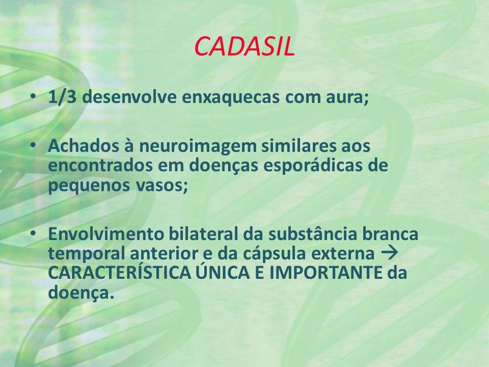 CADASIL 1/3 desenvolve enxaquecas com aura; Achados à neuroimagem similares aos encontrados em doenças esporádicas de pequenos vasos; Envolvimento bil