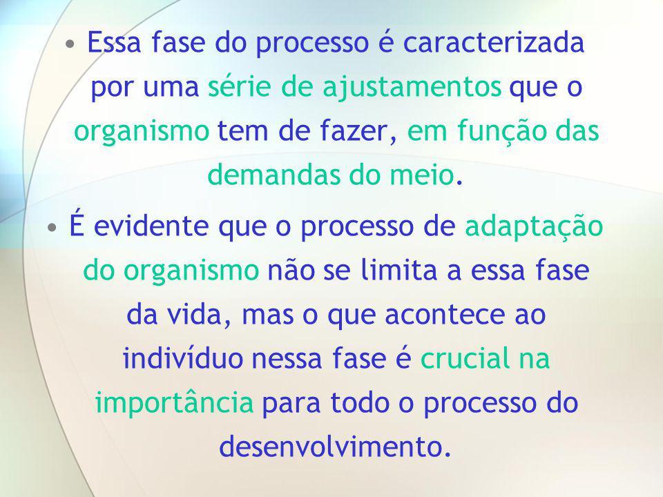 Essa fase do processo é caracterizada por uma série de ajustamentos que o organismo tem de fazer, em função das demandas do meio. É evidente que o pro