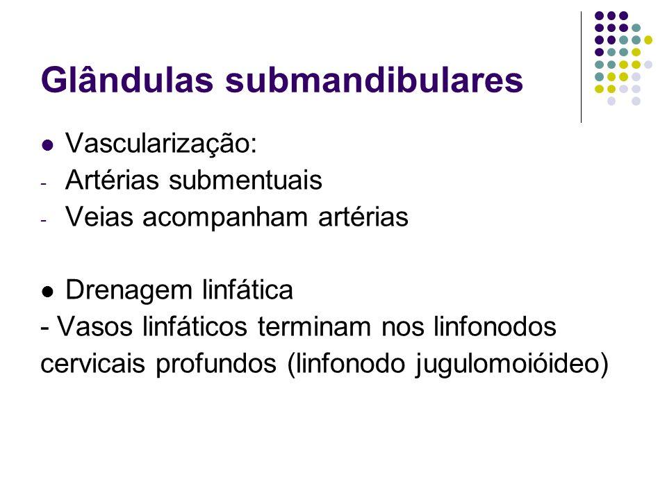 Glândulas submandibulares Vascularização: - Artérias submentuais - Veias acompanham artérias Drenagem linfática - Vasos linfáticos terminam nos linfon