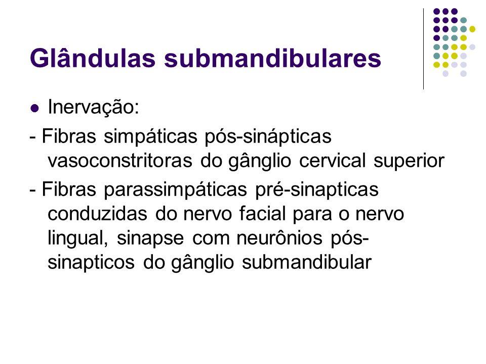Glândulas submandibulares Inervação: - Fibras simpáticas pós-sinápticas vasoconstritoras do gânglio cervical superior - Fibras parassimpáticas pré-sin