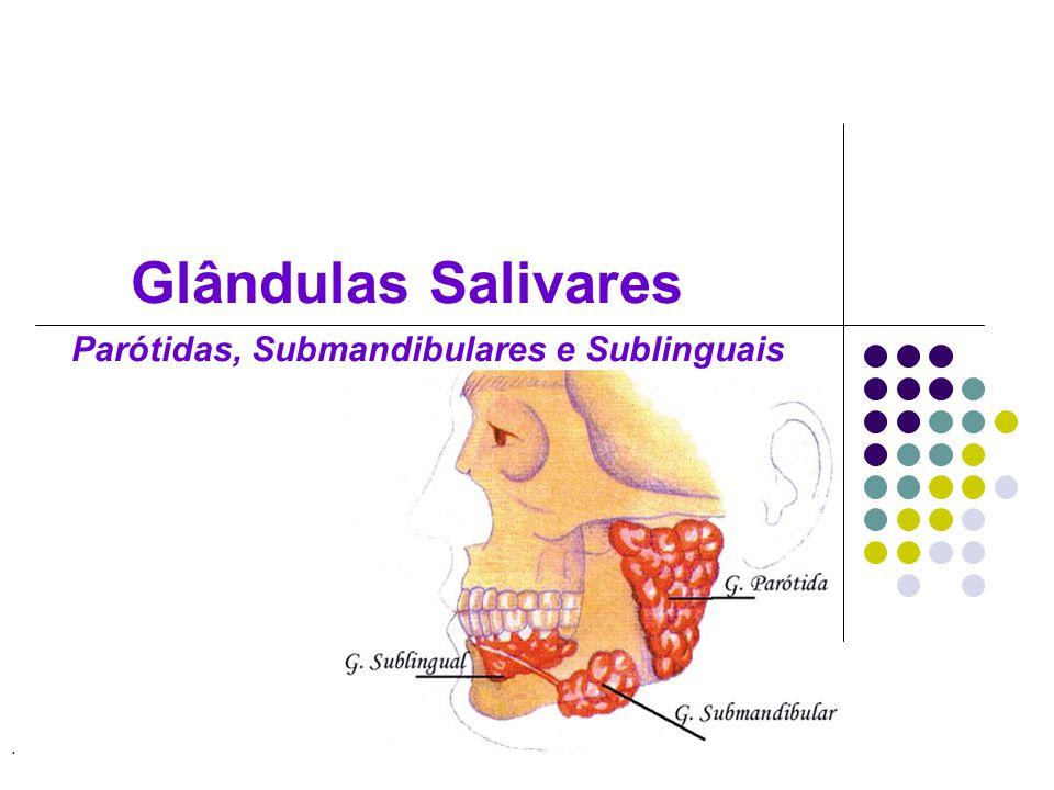 Glândulas submandibulares Ducto de Wharton abre-se em três orifícios sobre uma pequena papila ao lado do frênulo da língua (carúncula sublingual)