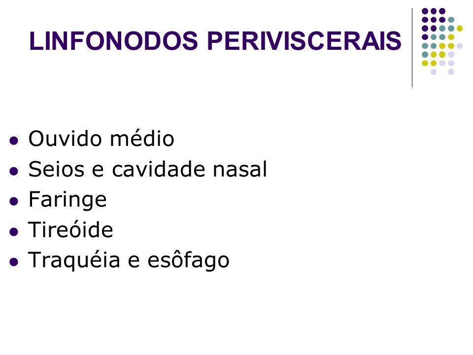 LINFONODOS PERIVISCERAIS Ouvido médio Seios e cavidade nasal Faringe Tireóide Traquéia e esôfago