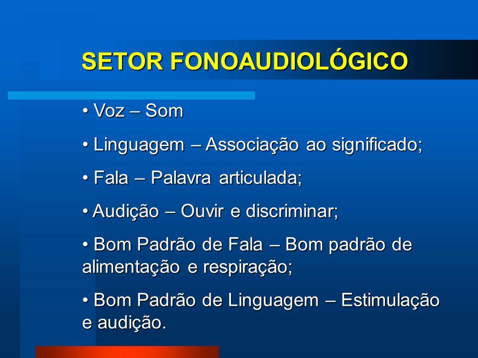 SETOR FONOAUDIOLÓGICO Funções Neurovegetativas - Sucção; - Deglutição; - Mastigação; - Respiração.