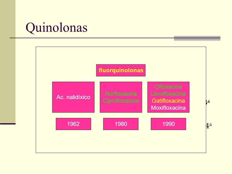 Quinolonas 2a2a 4a4a 3a3a 1a1a fluorquinolonas Ac. nalidíxico 1962 Norfloxacina Ciprofloxacina 1980 Ofloxacina Levofloxacina Gatifloxacina Moxifloxaci