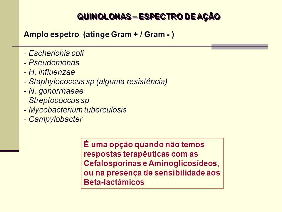 QUINOLONAS – INDICAÇÕES TERAPÊUTICAS Infecções das vias urinárias que não respondem aos aminoglicosídeos Norfloxacina / Ofloxacina Infecções respiratórias por Gram + / Gram – Otite externa Gonorréia ( Norfloxacina ou Ofloxacina ) Prostatite bacteriana ( Norfloxacina ) Pode ser usada em pacientes imunocomprometidos Como anti-séptico urinário (com reservas), o Ácido Nalidíxico já foi muito utilizado, isoladamente ou associado a um Gentamicina Infecções das vias urinárias que não respondem aos aminoglicosídeos Norfloxacina / Ofloxacina Infecções respiratórias por Gram + / Gram – Otite externa Gonorréia ( Norfloxacina ou Ofloxacina ) Prostatite bacteriana ( Norfloxacina ) Pode ser usada em pacientes imunocomprometidos Como anti-séptico urinário (com reservas), o Ácido Nalidíxico já foi muito utilizado, isoladamente ou associado a um Gentamicina