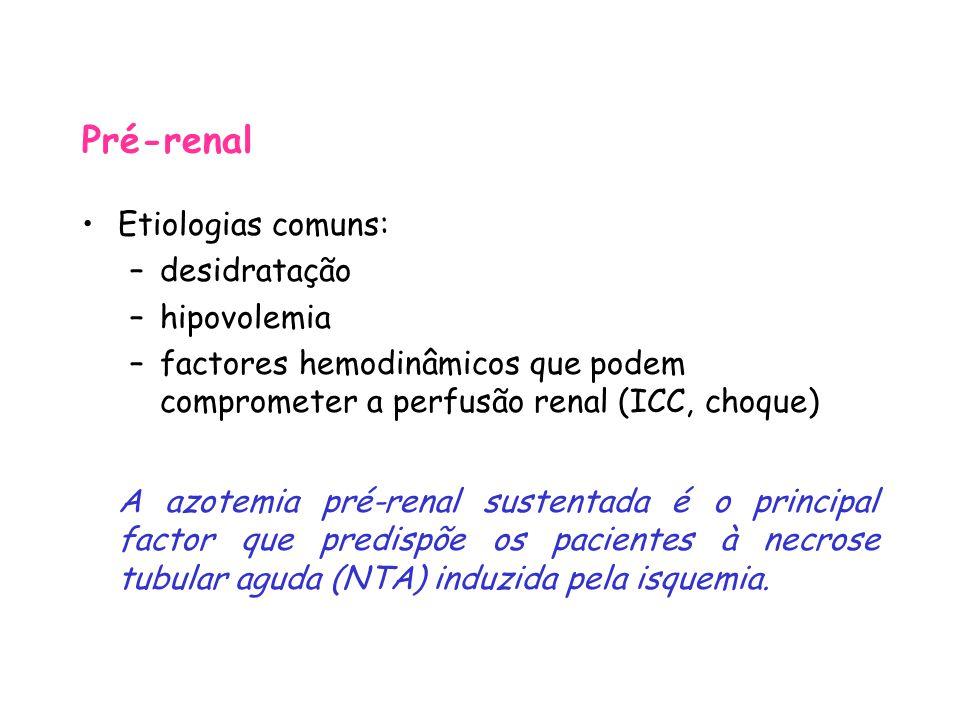 Pré-renal Etiologias comuns: –desidratação –hipovolemia –factores hemodinâmicos que podem comprometer a perfusão renal (ICC, choque) A azotemia pré-renal sustentada é o principal factor que predispõe os pacientes à necrose tubular aguda (NTA) induzida pela isquemia.