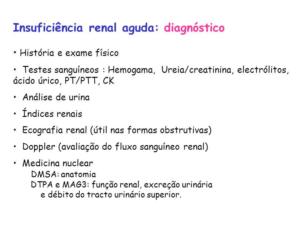 Insuficiência renal aguda: diagnóstico História e exame físico Testes sanguíneos : Hemogama, Ureia/creatinina, electrólitos, ácido úrico, PT/PTT, CK Análise de urina Índices renais Ecografia renal (útil nas formas obstrutivas) Doppler (avaliação do fluxo sanguíneo renal) Medicina nuclear DMSA: anatomia DTPA e MAG3: função renal, excreção urinária e débito do tracto urinário superior.