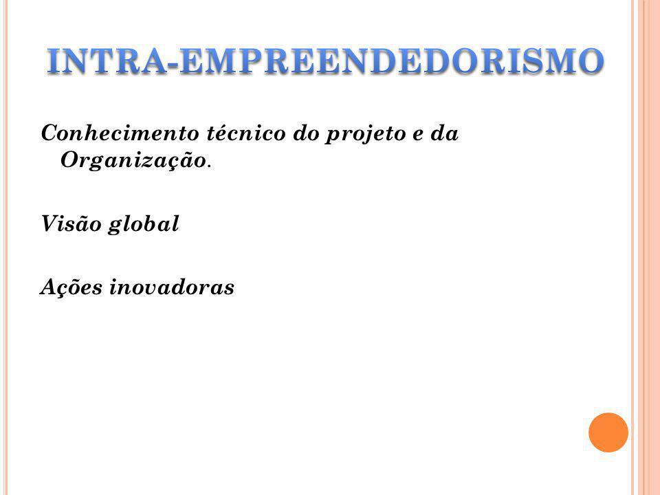 Conhecimento técnico do projeto e da Organização. Visão global Ações inovadoras
