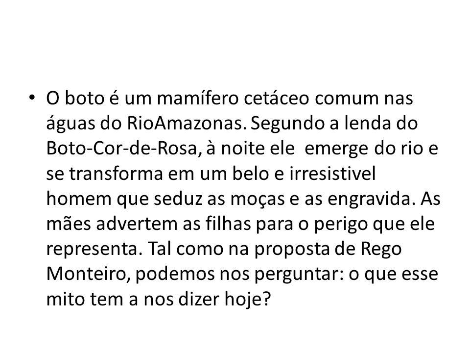 O boto é um mamífero cetáceo comum nas águas do RioAmazonas. Segundo a lenda do Boto-Cor-de-Rosa, à noite ele emerge do rio e se transforma em um belo