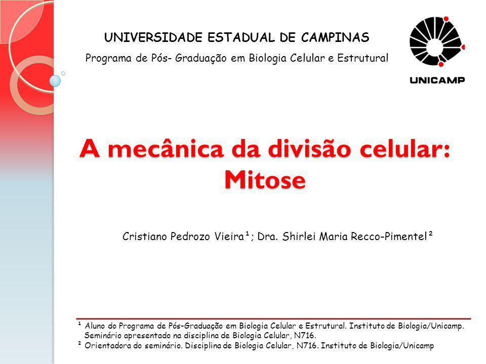 A mecânica da divisão celular: Mitose ¹ Aluno do Programa de Pós-Graduação em Biologia Celular e Estrutural. Instituto de Biologia/Unicamp. Seminário
