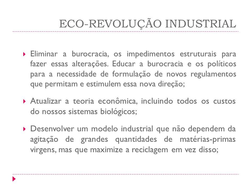 ECO-REVOLUÇÃO INDUSTRIAL Eliminar a burocracia, os impedimentos estruturais para fazer essas alterações. Educar a burocracia e os políticos para a nec