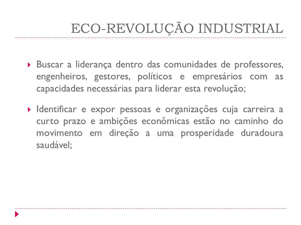 ECO-REVOLUÇÃO INDUSTRIAL Buscar a liderança dentro das comunidades de professores, engenheiros, gestores, políticos e empresários com as capacidades n