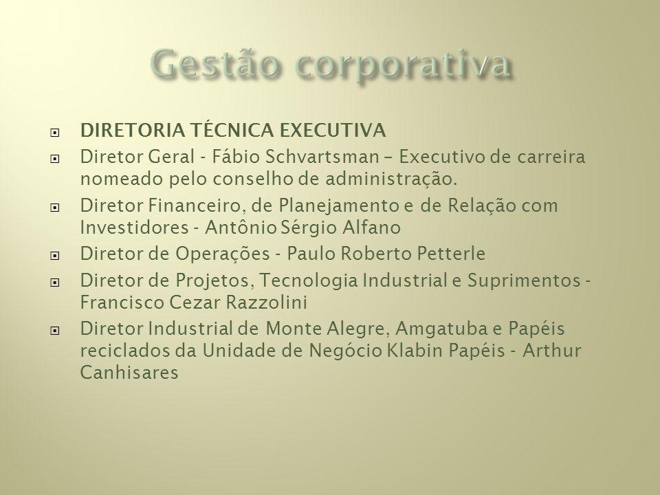 DIRETORIA TÉCNICA EXECUTIVA Diretor Geral - Fábio Schvartsman – Executivo de carreira nomeado pelo conselho de administração.