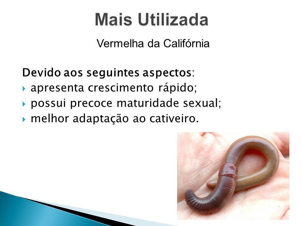 Vermelha da Califórnia Devido aos seguintes aspectos: apresenta crescimento rápido; possui precoce maturidade sexual; melhor adaptação ao cativeiro.