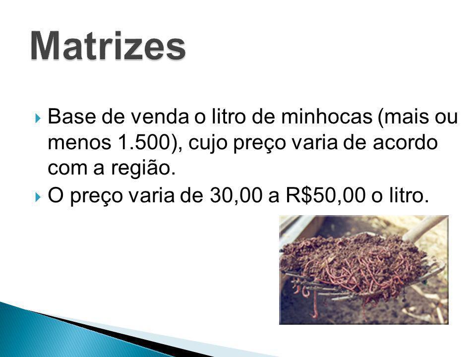 Base de venda o litro de minhocas (mais ou menos 1.500), cujo preço varia de acordo com a região. O preço varia de 30,00 a R$50,00 o litro.
